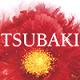 mã giảm giá Tsubaki