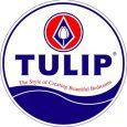mã giảm giá Tulip